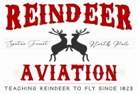 **Template Name:** Reindeer Aviation